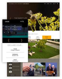CSULB redesign screenshots