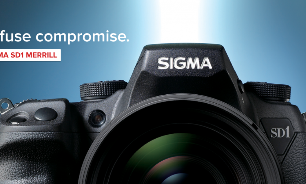 KWALL - Sigma Photo Case Study